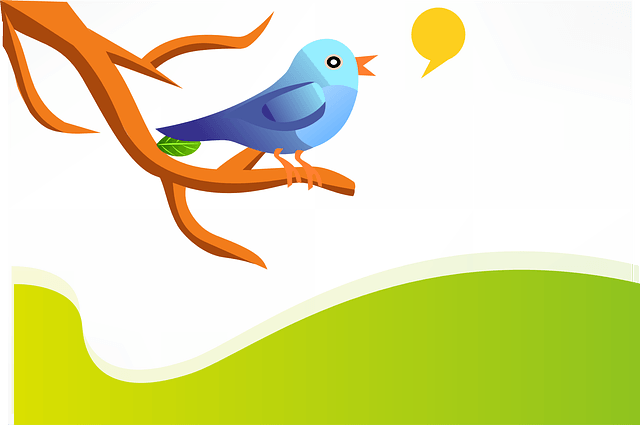 14 Ways to Engage Your Twitter Followers – Must Read